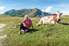 """Lassan elérünk a túrabot """"pro felhasználó"""" státuszig. Az előző részben a rezgéscsillapított túrabotokról és a nordic walking botokról beszéltünk, de még maradt néhány típus, melyeknek részletezését nem szabad kihagyni egy ilyen listából. Lássuk!     Hagyományos túrabotok   A klasszikus vagy hagyományos... Middle Aged Women, Middle Ages, Nordic Walking, Cow, Photo Editing, Marvel, Stock Photos, Pictures, Photography"""
