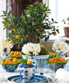 blue and white with orange. carolyne
