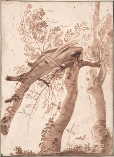 Nicolas Poussin - Two Silver Birches, the Front One Fallen, c. 1629 - Google Art Project.jpg