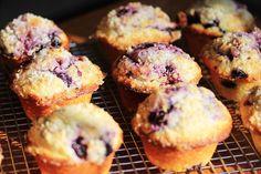lemon sugar crusted blueberry muffins. yummm