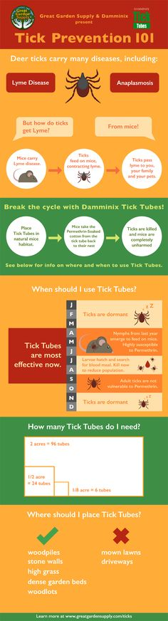 Protect your children & pets from this year with Damminix Tick Tubes, our top Tick prevention product. Tick Tubes, Deer Ticks, Hunting Tips, Garden Pests, Rodents, Rv Camping, Garden Supplies, Outdoor Fun, Gardening