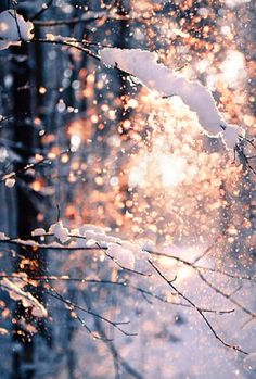 ☾pinterest: @1852jill ☼ even though we won't have snow to work with, this effect is really cool