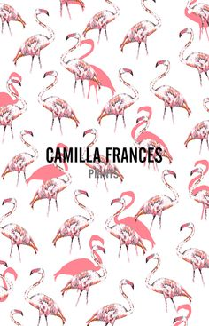 Camilla Frances Flamingos