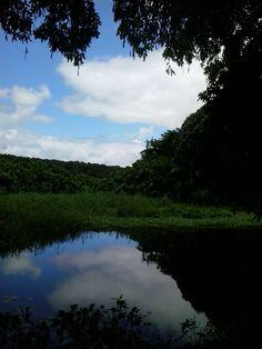 Jardim Botânico  João Pessoa - Paraíba - Brasil