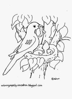 Bird Coloring Pages for Kids. 50 Free Printable Bird Coloring Pages for Kids. Aves Para Colorear E Imprimir Ideas for Your Inspiration Crayola Coloring Pages, Coloring Pages Winter, Shark Coloring Pages, Farm Animal Coloring Pages, Detailed Coloring Pages, Preschool Coloring Pages, Pokemon Coloring Pages, Cool Coloring Pages, Flower Coloring Pages