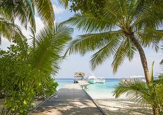 Welcome to Paradise Island by Yana Reint #YanaReint #Maldives #Island #ocean
