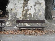 Sad Janka Kráľa najstarší verejný park v strednej europe Natural Interior, Garden Gazebo, Relaxing Places, Unique Gardens, Central Europe, Bratislava, Old Things, Sad, Public