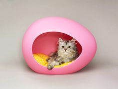 13 Cat-Approved Gifts for Fabulous Felines (And Their Humans)   PeiPod Pei Kitty I like the egg shape of the Pei Kitty, a modernist padded sleeping pod. The exterior is made of high density polyethylene and comes in two colors: pastel pink and mint. You can set it next to your Eames Lounge Chair, it'll look good there. And I will look good inside of it. $130  Pei Pod    WIRED.com