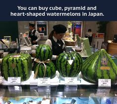 Shopping for watermelon in Japan.