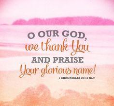 1 Chronicles 29:13