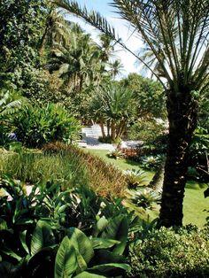 Paisagismo de Jardim