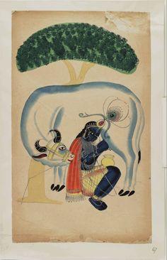 Kalighat paintings – Krishna milking