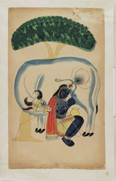 Kalighat paintings - Krishna milking