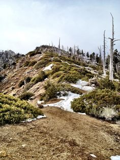 Bighorn Ridge, Ontatio Peak Trail