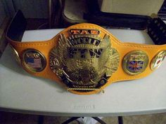 Tazz's FTW World Heavyweight Championship. Ronda Rousey Wwe, Wwe Belts, Japan Pro Wrestling, World Heavyweight Championship, American Legend, Female Wrestlers, Professional Wrestling, Champs, Dog Bowls