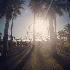 Coachella. The place to find upcoming artists and enjoy fan favorites under the California sun. I want to go there because I want to find that new music, rub shoulders with the best, soak in the fashion, and have fun!