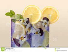 Photo about Cocktail drinks decorated with lemon and edible violet flowers. Edible Plants, Edible Flowers, Edible Garden, Raised Garden Bed Plans, Lawn Fertilizer, Growing Flowers, Sustainable Living, Instagram Accounts, Indoor Plants