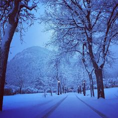 Colorado is such an inspiring place to live. It's a perfect place to loose yourself and forget that the world has gone insane. #naturalbeauty #nature #snow #inspiration #colorado #lyingonice