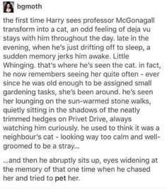 I like this, except that if McGonagall had been watching Harry, she would have KNOWN the kind of abuse he was experiencing.  And I don't want to believe that there was yet another adult in his life who didn't save him from that (looking at you, Dumbledore).