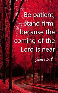 Be patient, stand firm, because the coming of the Lord is near. JAMES 5:8