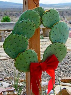 Mexican wreath - Wreath made of Nopales