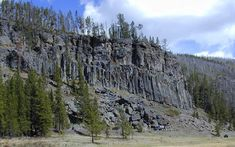 Obsidian Cliff is a unique feature at Yellowstone, it is an exposed area where thick rhyolite lava flow erupted about 180,000 years ago. Obsidian is a dark volcanic glass. Source: http://pubs.usgs.gov/fs/2005/3024/