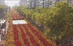 #Catalonia #Independence #Day #11s http://www.cribeo.com/actualidad/5231/lo-que-has-de-ver-de-la-diada-para-entender-la-magnitud-del-pueblo-catalan