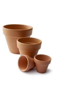 Gardening tip: Vegetables thrive as container plants. Neat idea to plant veggies in pots. From Dallas Morning News