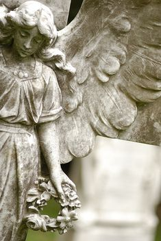 ☫ Angelic ☫ winged cemetery angels and zen statuary - Cemetery Angels, Cemetery Statues, Cemetery Art, Statue Ange, Entertaining Angels, Steinmetz, Old Cemeteries, Graveyards, Old Books