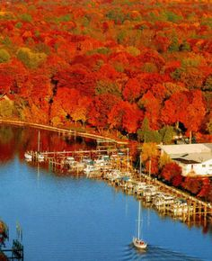 Check out all the activities #Saugatuck and #Douglas have to offer this fall!