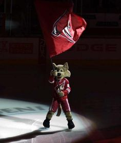 Phoenix mascot Howler!