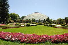poto-sentido.blog.sapo janelas e jardins de portugal - Pesquisa Google