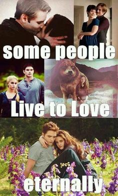 THE TWILIGHT SAGA Twilight Saga Quotes, Twilight Saga Series, Twilight Edward, Twilight Cast, Twilight New Moon, Edward Bella, Twilight Series, Twilight Movie, Twilight Quiz