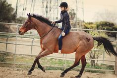 1000 Images About Equestrian Style On Pinterest George