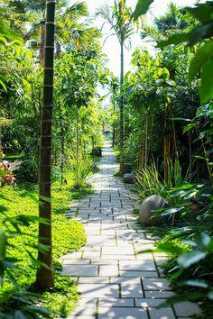 Tropical Landscaping, Tropical Garden, Backyard Landscaping, Terrace Garden, Garden Paths, Amazing Gardens, Beautiful Gardens, Minimalist Garden, Garden Landscape Design