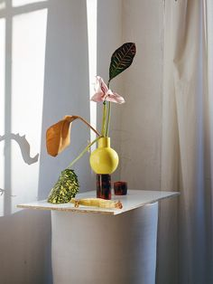 Meet florist and designer Carolina Spencer of Matagalan Plantae, whose flower arrangements almost feel more painted than real. Foto Still, Still Life Photos, No Rain, Prop Styling, Ceramic Artists, Still Life Photography, Flower Vases, Floral Flowers, Ikebana