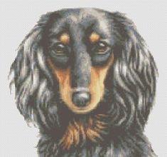 Counted Cross Stitch Pattern Long Haired Dachshund Dog cs0831   TerryEmelia - Patterns on ArtFire
