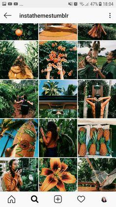 Instagram Blog, Layout Do Instagram, Instagram Feed Ideas Posts, Instagram Themes Vsco, Best Instagram Feeds, Nature Instagram, Story Instagram, Instagram Design, Ig Feed Ideas