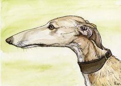 Serenity  Greyhound Dog Art Print by AlmostAnAngel66 on Etsy, £15.00