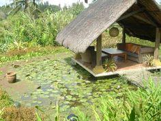 Moon Garden. Tagaytay Moon Garden, Water Garden, Tagaytay, More Fun, Philippines, Tropical, Island, Explore, House Styles