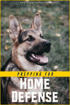 Tips on Prepping for Home Defense Against Intruders – What You Should Know Survival Tips, Survival Skills, Safe Room, Home Defense, Protecting Your Home, Emergency Preparedness, Life Hacks, Prepping, Home And Family