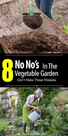 Urban Garden shoveling compost and senior woman watering the garden - Beginner or a guru growing vegetables, make mistakes. It's important to learn and move on. Here's a list of 8 mistakes NOT to make [LEARN MORE] Vegetable Garden Planner, Veg Garden, Garden Types, Edible Garden, Garden Plants, Vegetable Gardening, Veggie Gardens, Beginner Vegetable Garden, Planting A Garden