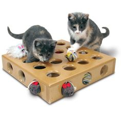 SmartCat Peek-a-Prize Toy Box for Cats  - looks really cute!