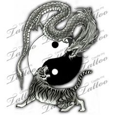 Marketplace Tattoo Tiger and Dragon Yin Yang #2794 | CreateMyTattoo.com