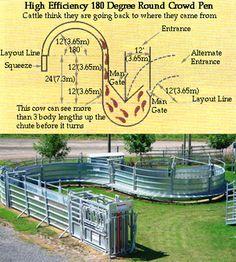 Bienestar animal // Farmquip Uruguay // Líder en equipamiento para manejar ganado