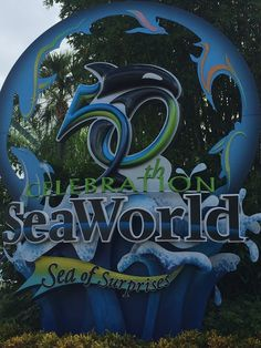 Orlando Florida, the Sunshine State, is also the happiest place on earth for me. Affordable Family Vacations, Sunshine State, Heart For Kids, Sea World, Orlando Florida, Places To Travel, Neon Signs, Awesome, Destinations