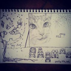Cat drawing.. The end! :D     #cat #cats #catstagram #catsofinstagram #katstagram_ #drawing #card #idea #november #atthedrive-in #movie #milo