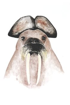 """Käpt'n Walross"" auf RIDING RHINO #Walross #walrus #CaptainJackSparrow #illustration #watercolor #Aquarell #animal #design #Tierbild #veganism #cyclism #minimalism #Glück"