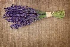 Image result for unusual wedding flowers uk