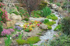 Ob reißend oder langsam fließend: Wie man einen Bachlauf im Garten anlegt